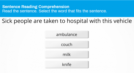 Sentence Reading Comprehension